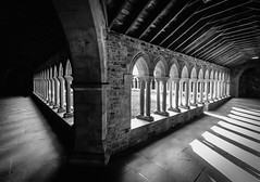 Iona Abbey. (Ian Emerson) Tags: iona abbey arches architecture heritage scotland island cloisters stonework stone shadows light 1018mm wideangle stcolumba indoor canon omot monks