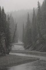stewart-canyon (JeremyOK) Tags: stewartcanyon cascaderiver lakeminnewanka banffnationalpark banff hike river snow winter fall thanksgiving trees forest