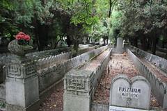 Mass Graves 1944-45 Kozma Street Jewish Cemetery (Ray Cunningham) Tags: kozma street jewish cemetery budapest hungary magyarország ungarn hongrie ве́нгрия hungría ungheria 匈牙利