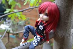 DSC_4650 (DollEmiou) Tags: doll pullip pullipfullcusto fc nezumi pullipsticafc obitsum wig red eyeships