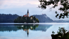 Lake Bled (fabsit) Tags: lakebled lake bled slovenia europe swan 50mm morning castle autumn reflection