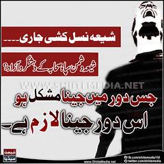 !!       #ShiaGenocide (ShiiteMedia) Tags: muharam 1438 ashura shia shiite media killing genocide news urdu      channel q12