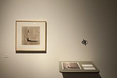 Detalle fotografa expuesta (Fundaci Catalunya-La Pedrera) Tags: art arte lapedrera exposicin chemamadoz exposici