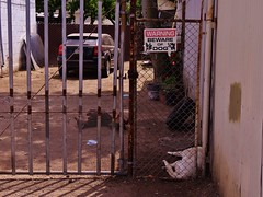 Dogs, Beware of Neglectful Owners (rickele) Tags: dogs bewareofdog stockton animalabuse animalcontrol