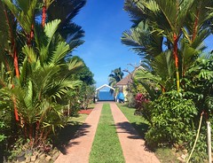 The Way to the Restaurant (Joshua Stefanini) Tags: polynésia française french polynesia polinesia francese tahiti mare sea mar ocean oceano summer estate verano tropics tropici tropicale paradiso