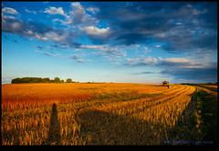 160723-9937-XM1.jpg (hopeless128) Tags: self france sunset shadow fields sky eurotrip 2016 me combineharvester clouds saintangeau aquitainelimousinpoitoucharen aquitainelimousinpoitoucharentes fr