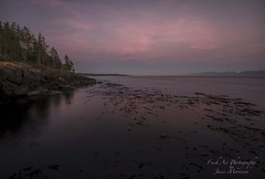 Sometimes you have to turn around and look behind you to see the beauty unfolding. (Freshairphotography) Tags: sunset afterglow colorful purple pinks pacificocean pacificmarinecircleroute kelpbed reflections coast westcoast vancouverisland serene peaceful sheringhampoint shirleybc amazing explorevancouverisland explorebc