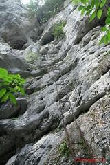 IMG_8927 (Pfluegl) Tags: niedersterreich sterreich austria lower wandern hikking hiking wanderlust natur nature autumn summer rock steine geology geologie steinwandklamm klamm gorge canyon