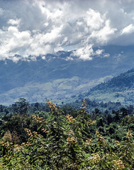 Laos : Muang Sing, landscape #3 (foto_morgana) Tags: analogphotography analogefotografie asia clouds highland indochina landscape laos mountainous muangsing nikoncoolscan outdoor panoramic photographieanalogue scenic tourism travelexperience vuescan