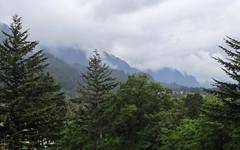 IMG_3523 (kz1000ps) Tags: tour2016 clouds oregon washingtonstate columbiariver border columbiarivergorgenationalscenicarea fog mist grey pinetrees cliffs canyon cascaderange