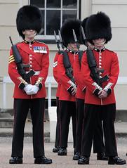 Img554988nx2 (veryamateurish) Tags: unitedkingdom british military army london wellingtonbarracks changingoftheguard publicduties ceremonial guardmounting newguard footguards householddivision grenadierguards