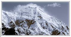 Postcard from Npal (Langtang ) (L'Abominable Homme de Rires) Tags: langtang nepal noiretblanc blackwhite nb montagne montain landscape trek trekking zigzag