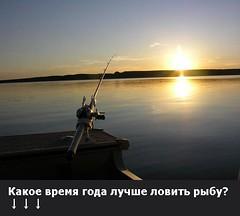 Какое время года лучше ловить рыбу? (ГoсРыбнaдзоp) Tags: old the4elements butterfly depthoffield christmas flickr water blue