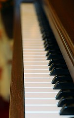 88 KEYS (parrotlady66..) Tags: piano canon70d church pianokeys cameraclubcgurchvisit
