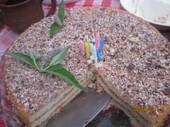 IMG_1045 (ЛюбовьЯппарова) Tags: торт деньрождения еда можарка свечи