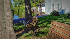 Benches (frptlady....) Tags: eriecanal autumn2016 fairportny hometowns hbm benches