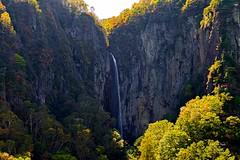 Gongen Falls - Yonako Great Falls (yamanaito) Tags: falls nagano suzaka yonako