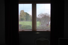 16th October 2016 (lucyphotography) Tags: grey horrible day window blinds