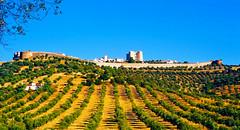 Evoramonte | - (Antnio Jos Rocha) Tags: portugal alentejo evoramonte vila povoao muralha medieval paisagem torre rvores natureza