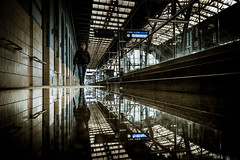 Light Traveler (tomabenz) Tags: sony a7rm2 praha puddlegram street reflection czechrepublic rainy day human geometry prague europe praga photography humaningeometry rainyday sonya7rm2 streetphotography