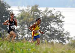 Hallwilerseelauf: Horrendes Tempo auf dem ersten Kilometer