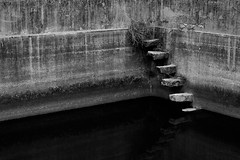 Climbing up the walls (alejo.365shoots) Tags: stairs well water wall nowhere reflection bw radiohead 365 music