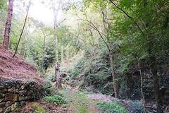 """Un lugar donde el silencio se escucha"""" (Lumiago) Tags: naturaleza cantabria espaa spain esenciadelanaturaleza"""
