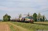 E655.205 TI/Cargo (Massimo Minervini) Tags: e655 e655xmpr caimano carritramoggia tramogge cereali cappelladeipicenardi cremona lineamantovacremona ti cargo trenitalia trenomerci mi train trenes ferrovia binari pajsage locomotore