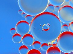 Suspended (Karen_Chappell) Tags: blue red bubbles oil water abstract macro canonef100mmf28usmmacro circle round geometry geometric refraction reflection liquid bubble