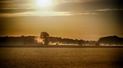 Golden Sunrise (CdnAvSpotter) Tags: sunrise navan ontario pond early morning landscape scenery golden hdr sun trees mist fog serene farm cornfield wheatfield