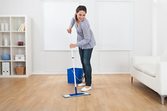 A Janitorial Team With A Difference (johndukecoin) Tags: 20sbeautifulbucketcaucasiancausalchorescleancleanercleaningcleanupdomesticequipmentfemalefloorflooringfullhappinesshappyhardwoodholdinghomehouseholdhouseworkhygieneindoorslengthlifestylelivingmopmo mop maid floor women home cleaner mopping cleaning flooring people room washing holding happy living bucket clean full standing working length housework equipment hardwood household young chores wooden female person domestic smile routine cleanup wiping causal lifestyle object smiling happiness sofa beautiful caucasian one horizontal woman indoors hygiene wood 20s germany
