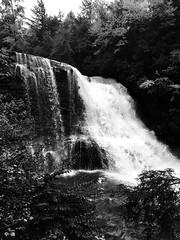 Swallow Falls SP ~ mono take - HSS! (karma (Karen)) Tags: swallowfallssp garrettco maryland mdstateparks muddycreekfalls waterfalls monochrome bw sliderssunday hss cmwd topf25