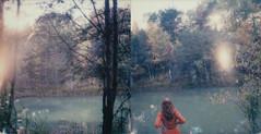 sunfall (Lisa Toboz) Tags: impossibleproject instantfilm polaroid selfportrait polaroidweek2016 sunflare inthewoods westernpennsylvania slr680 autumn diptych