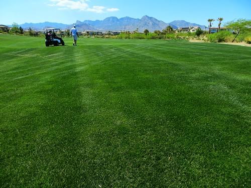 Petarian Golf 2013 - 073