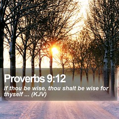 Daily Bible Verse - Proverbs 9:12 (daily-bible-verse) Tags: preaching salvation cross mightywarrior godisfaithful