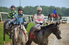 201608-21 (17) r7 over and the horses returned to the paddock (JLeeFleenor) Tags: photos photography md maryland marylandracing marylandhorseracing jockey   jinete  dokej jocheu  jquei okej kilparatsastaja rennreiter fantino    jokey ngi horses thoroughbreds equine equestrian cheval cavalo cavallo cavall caballo pferd paard perd hevonen hest hestur cal kon konj beygir capall ceffyl cuddy yarraman faras alogo soos kuda uma pfeerd koin    hst     ko  laurelpark femaleathlete femalejockey