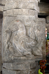 A Mythical animal with features of Elephant and Peacock (VinayakH) Tags: halasurusomeshwaratemple bangalore india ulsoor chola vijayanagaraempire kempegowda hindu shiva temple hinduism