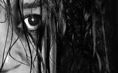 (Donald Palansky Photography) Tags: sony alpha portrait sonyslta99v 50mmf17 sigma50mmf14dghsmartlens
