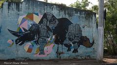 _DSC5969 (Mario C Bucci) Tags: saida fotografia pacheco paulo tellis mario bucci hugo shiraga fabio sideny roland grafites volu ii