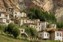 Village du Zanskar... (Dolkar-photographe...) Tags: villageduzanskar zanskar t2016 montagne villagedanslamontagne habitat drapeauxdeprire bouddhisme
