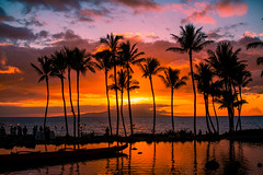 And We Fell (Thomas Hawk) Tags: grandwailea hawaii maui wailea waldorfastoria waldorfastoriagrandwailea beach clouds humuhumu humuhumunukunukuapuaa palmtree restaurant sunset tree fav10 fav25 fav50 fav100