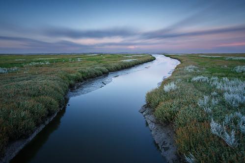 Marsh landscape at the Wadden Sea