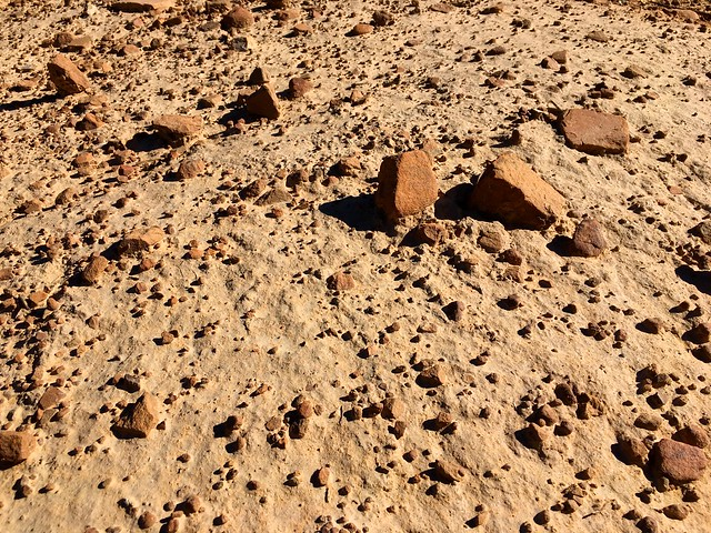 Walking on Mars