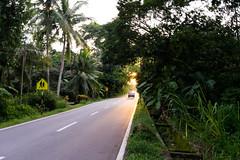 Jalan Kampung (muhammadzaki9) Tags: nibongtebal pulaupinang malaysia my penang sonya7ii sonyalpha sonnartfe2835 sony zeiss sunset vilage kampung road
