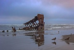 Peter Iredale Shipwreck 3169 A (jim.choate59) Tags: peteriredale shipwreck history fortstevenspark astoriaoregon astoria jchoate sea sand seagulls sunset waves shoreline rust reflection overcast nautical marine decay wreckage stormy beach surf tide on1pics lonely somber windy