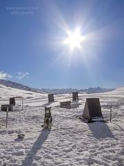 El descanso de la manada (javiruiz) Tags: perro nieva pirineo baqueiraberet montaa nieve javierruizherrera mushing husky