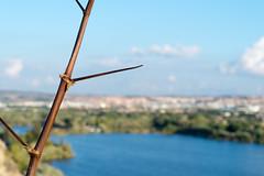 Arganda (san_rules) Tags: paisaje costa laguna