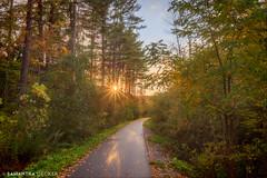A Fall Path (Samantha Decker) Tags: canonef1635mmf28liiusm canoneos6d hdr ny newyork samanthadecker saratogasprings springruntrail autumn fall foliage upstate