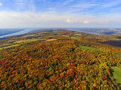 Fall Canvas (Matt Champlin) Tags: fall autumn colorful foliage rainbow amazing fingerlakes landscape aerial aerialphotography 2016 dji djiphantom4 drones drone uav uas protected ripleyhill nature peace peaceful untouched life leaves tree trees forest