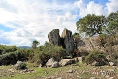 Grandi rocce del Gerrei - Silius (Franco Serreli) Tags: sardinia sardegna rocce pietre roccia formazionirocciose paesaggio paesaggisardi naturaambientipaesaggi natura silius gerrei